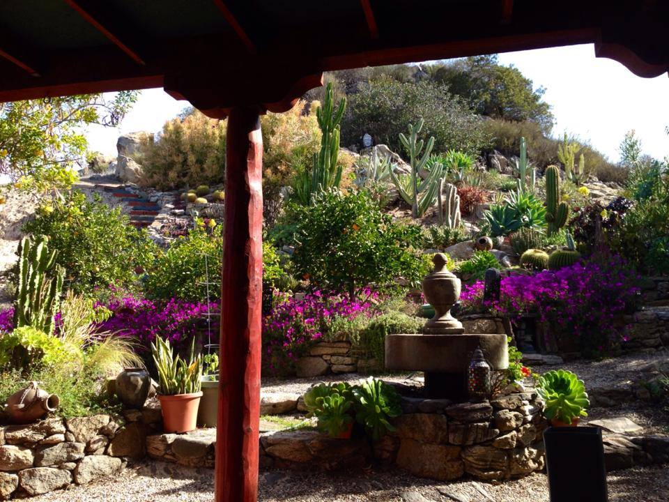 zahrada mimi kirk