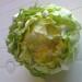 karfiol zelenina