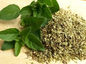 oregano-olej čaj