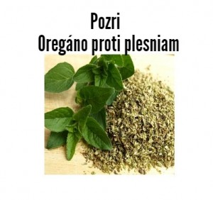 oregano proti plesniam