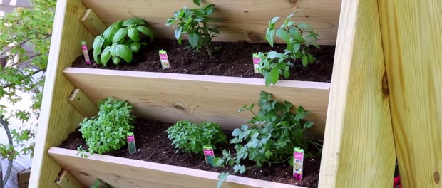 potravinova vertikalna zahrada