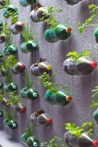 vertikalna farma z pet fliaš